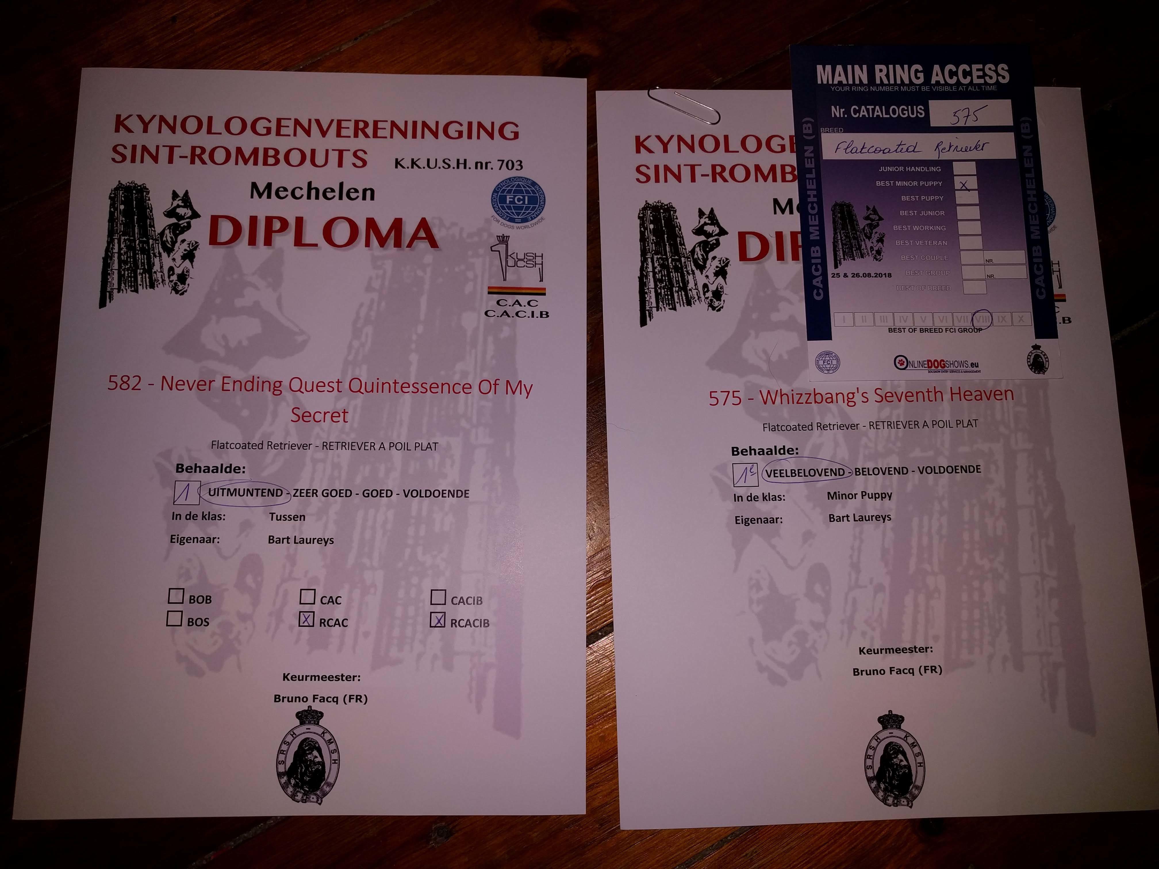 FlatcoatedRetrevierNEQ-Diplomas
